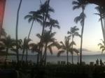 Palm Trees at Sunset, Maui